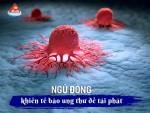 Ngủ đông khiến tế bào ung thư dễ tái phát